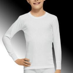 Camiseta Manga Larga Abanderado 207